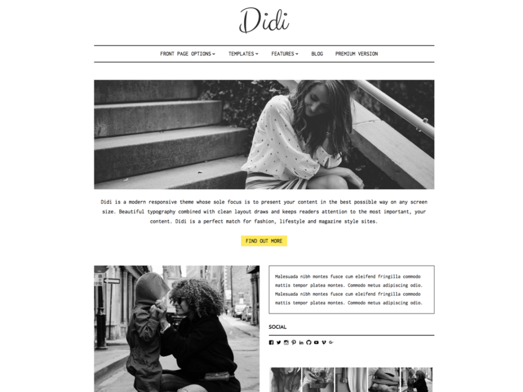 didi-wp-blogging-theme