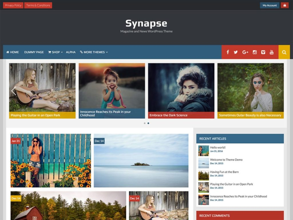 synapse-wp-mag-theme