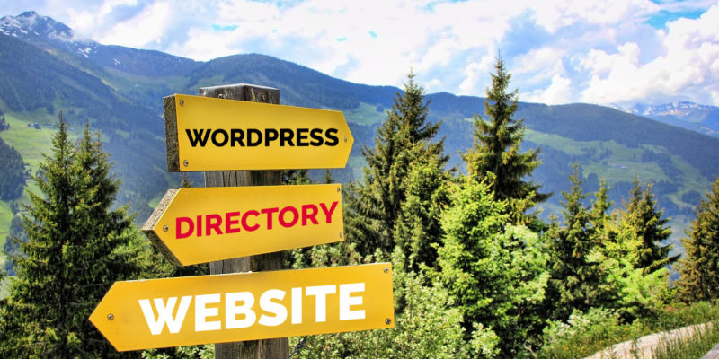 How To Create A Directory Website in WordPress?